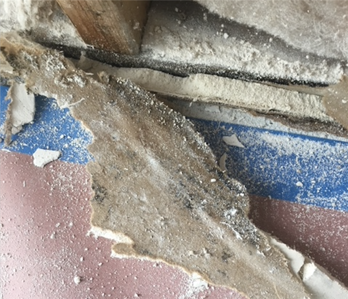 How does mold get in my house? Before