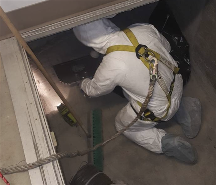 Checking for mold in a crawlspace