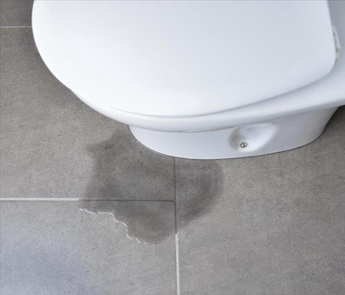 Water Damage How To Replace a Toilet