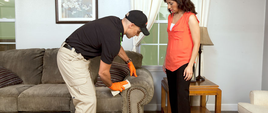 Boston, MA carpet upholstery cleaning